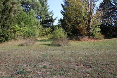 Williamston Residential Lots & Land For Sale: 122 Churchhill Downs