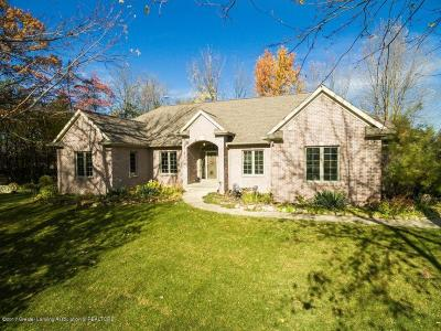 Grand Ledge Single Family Home For Sale: 13565 Dusty Trail