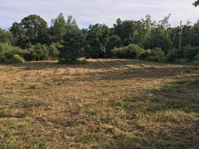 Haslett Residential Lots & Land For Sale: 9455 E State Road