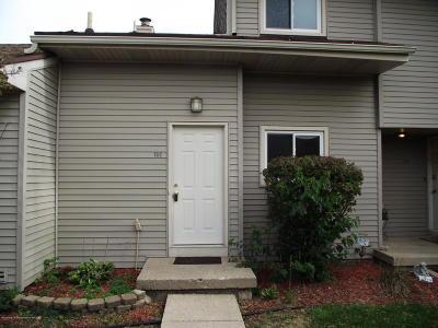 Grand Ledge Condo/Townhouse For Sale: 905 Registry Drive #133