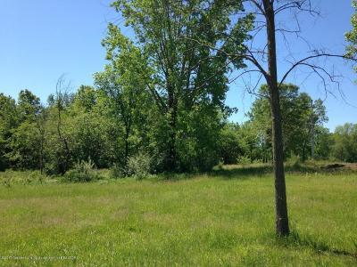 Dewitt Residential Lots & Land For Sale: Lot 52 W Herbison Road