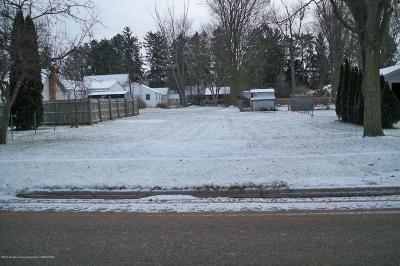 Grand Ledge Residential Lots & Land For Sale: Kennedy Street