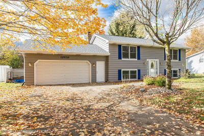 Grand Ledge Single Family Home For Sale: 12859 Dundee Drive