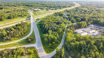 Haslett Residential Lots & Land For Sale: 9911 Stoll Road