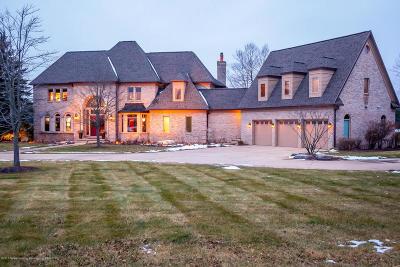 Williamston Single Family Home For Sale: 1101 Cherry Valle Lane