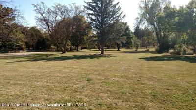 Grand Ledge Residential Lots & Land For Sale: 968 E Saginaw Highway
