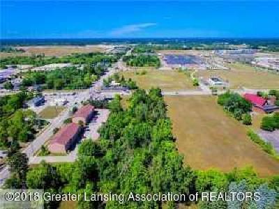 Lansing Residential Lots & Land For Sale: 2030 Lake Lansing Road