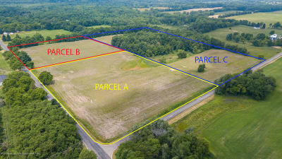 Williamston Residential Lots & Land For Sale: Vl Haslett Parcel B Road
