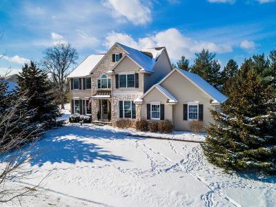 Dewitt Single Family Home For Sale: 13142 Blaisdell Drive