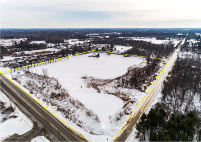 Grand Ledge Commercial For Sale: 7837 W Grand River Highway
