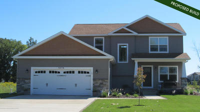 Okemos Single Family Home For Sale: 137 Forest Trail Drive