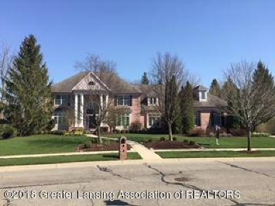 Okemos Single Family Home For Sale: 3668 Autumnwood Lane