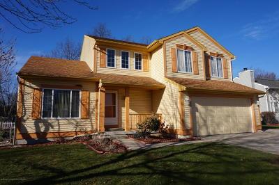 Dewitt Single Family Home For Sale: 12806 Houghton