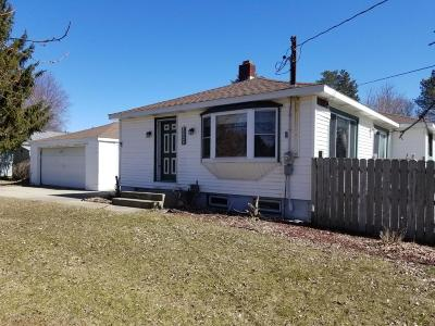 Haslett Single Family Home For Sale: 5550 Marsh Road