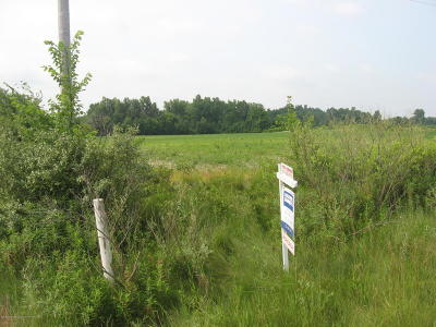 Grand Ledge Residential Lots & Land For Sale: E St Joe Highway