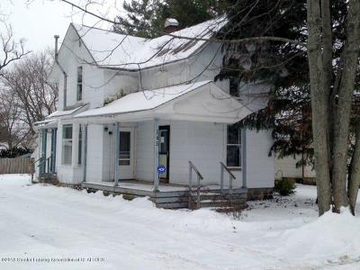 Sunfield Single Family Home For Sale: 145 Washington Street