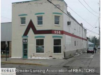 Commercial For Sale: 114 E Lovett Street