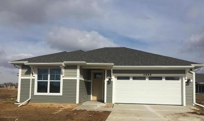 East Lansing Single Family Home For Sale: 3966 Mustang Road