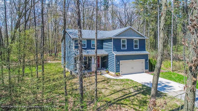 Williamston Single Family Home For Sale: 3123 Pawapi Lane