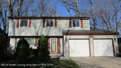 Lansing Single Family Home For Sale: 3018 Norwich Road
