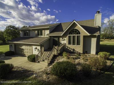 Grand Ledge Single Family Home For Sale: 9996 Clark Road