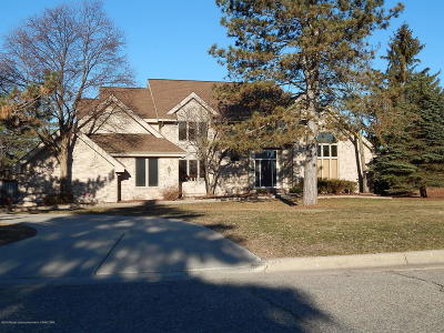 East Lansing Single Family Home For Sale: 6371 Island Lake Drive