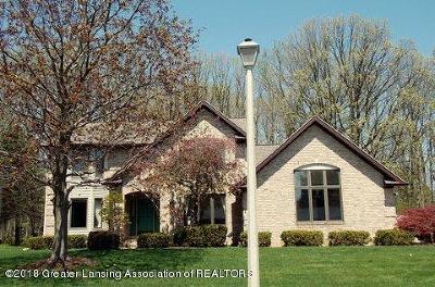 Lansing Single Family Home For Sale: 4822 Malpaso Lane