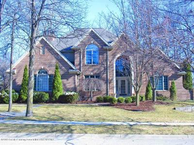 Okemos Single Family Home For Sale: 2032 Birch Bluff Drive