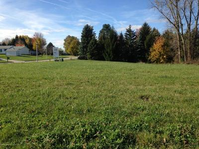 Lansing Residential Lots & Land For Sale: 3914 Carnaby Drive