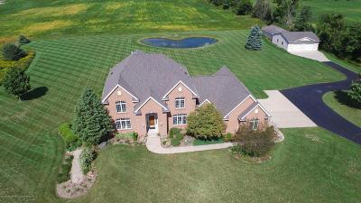 Grand Ledge Single Family Home For Sale: 1707 W St Joseph Highway
