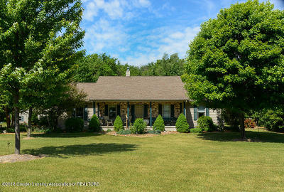 Williamston Single Family Home For Sale: 1435 Epley Road
