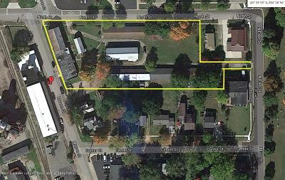 Commercial For Sale: 208 N Mason Street