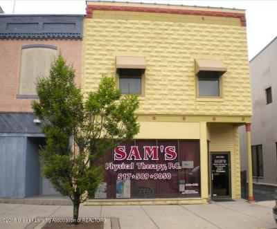Commercial For Sale: 148 S Main Street