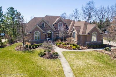 Okemos Single Family Home For Sale: 3597 Otsego Drive