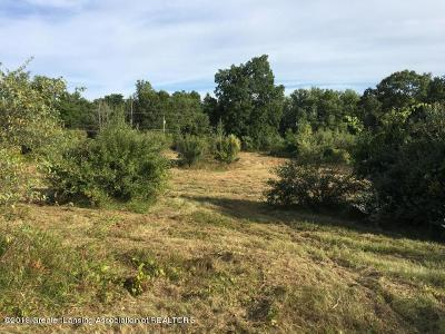 Haslett Residential Lots & Land For Sale: 15930 S Peacock Road