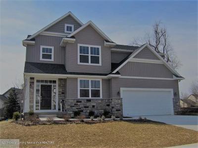 Okemos Single Family Home For Sale: 2524 Kevern Way