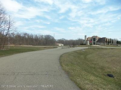 Haslett Residential Lots & Land For Sale: Parcel 2 S Sylvester Lane