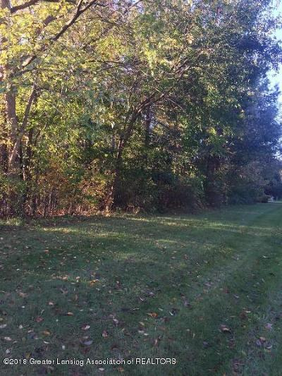 Dewitt Residential Lots & Land For Sale: W Herbison Road
