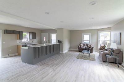 Grand Ledge Single Family Home For Sale: 220 W Jefferson Street