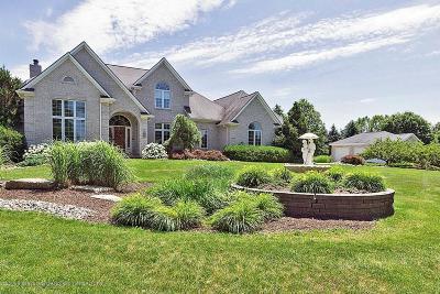 Williamston Single Family Home For Sale: 4330 Fruitbelt Lane