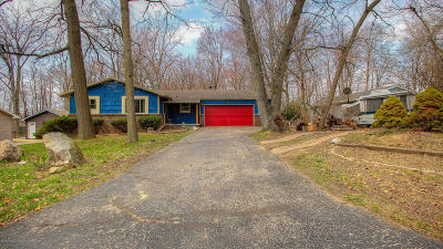 Haslett Single Family Home For Sale: 6079 Beechwood Drive