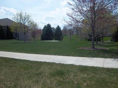 Grand Ledge Residential Lots & Land For Sale: 902 Woodbury Drive