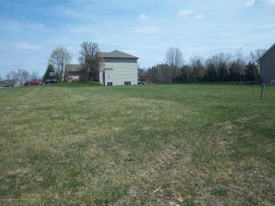 Grand Ledge Residential Lots & Land For Sale: 905 Woodbury Drive