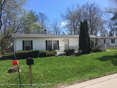 Haslett Single Family Home For Sale: 5980 Cypress