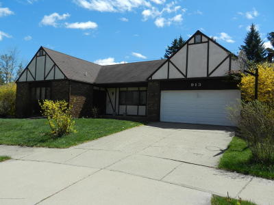 East Lansing Single Family Home For Sale: 913 Whittier Drive