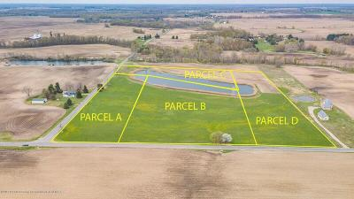 Williamston Residential Lots & Land For Sale: Vl Bray Road Parcel B