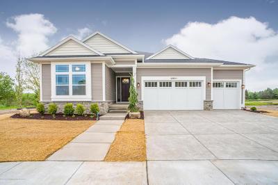 Okemos Single Family Home For Sale: 2991 Medinah Drive