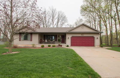 Grand Ledge Single Family Home For Sale: 700 Fieldview