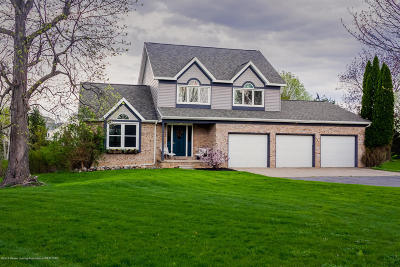 Williamston Single Family Home For Sale: 4176 Meadowdale Drive