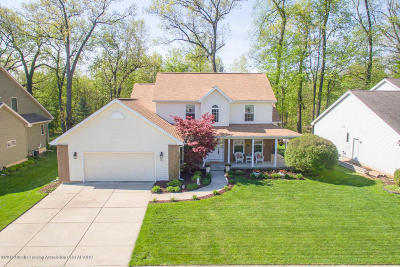 East Lansing Single Family Home For Sale: 6732 English Oak Drive